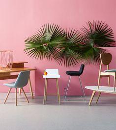 Palms on Pink. Temple & Webster - Nicole Valentine Don Photo: Denise Braki