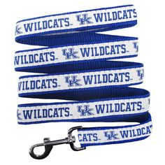 Pets First Kentucky Wildcats Nylon Pet Leash, Multicolor