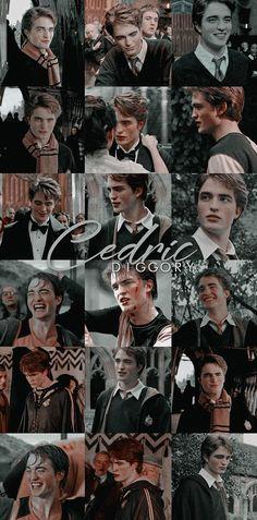 Ginny Weasley, Hermione Granger, Severus Snape, Draco Malfoy, Harry Potter Characters, Luna Lovegood, Daniel Radcliffe, Tom Felton, Sirius Black