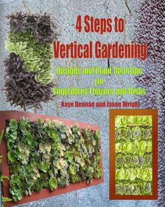 weed killers natural recipes that really work homemade the ou0027jays and natural