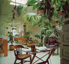 indoor plants and greenery. I love the concept of an interior garden Hanging Plants, Indoor Plants, Hanging Gardens, Potted Plants, Roof Plants, Indoor Outdoor, Sala Tropical, Tropical Forest, Interior And Exterior
