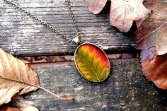 Colourful real leaf necklace - Pressed autumn leaf jewelry - Botanical jewellery - Nature inspired necklace - Autumn necklace - Oval silver by SnippetsOfNature on Etsy https://www.etsy.com/listing/210169873/colourful-real-leaf-necklace-pressed