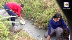 Beautiful Girl Fishing - Amazig Fishing at Kampong cham -  Cambodia Trad...