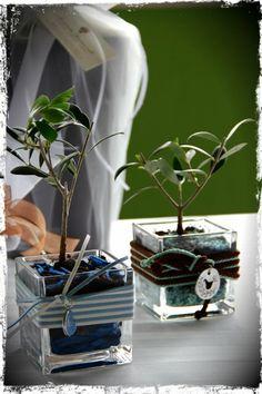 olive wedding ideas. Nosaltres t'oferim les oliveres y tu les decores com vols. http://viulolivera.com