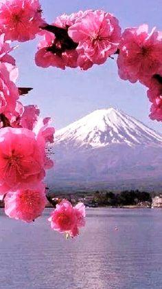 Mount Fuji Japan, Monte Fuji, Japanese Landscape, Beautiful Landscapes, Mother Nature, Tourism, Beautiful Pictures, Scenery, Natural