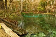Pin for Later: 7 Best Swimming Holes in the US Ginnie Springs, FL