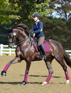 Lovely lemeiux dressage set from tack2U