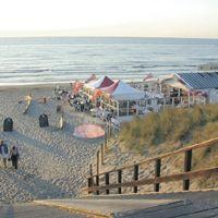 Scheveningen strand - Zwarte Pad Hier mag je het hele jaar door lekker wandelen met je hond op het strand! Soort mini-mini-break dus!!