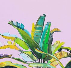 Mauve Mirage - original oil painting by Kate Jarman of Banana Leaf Palm. Tropical dreaming