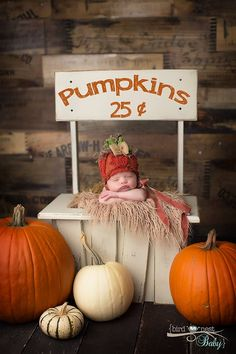 fall photo props