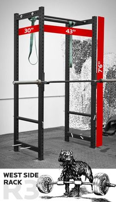 squat rack, need one. More