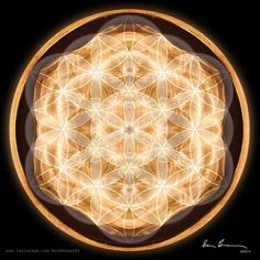 Cymatic image with Flower of Life overlay. The Flower of life is a 2D representation of energy which is a 4th dimensional occurrence. #benbrowne