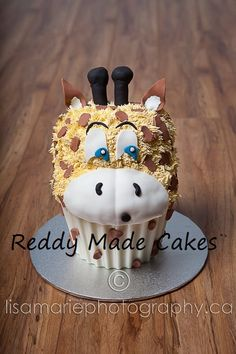 A cake that I made recently for a cake smash for Lisa Marie Photography.    Please take a look at my facebook page for more photos. Search Reddy Made Cakes