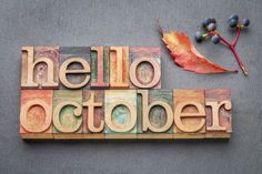 Check out all our fun programs in October for adults! Fall Banner, Hello October, Slate Stone, Beer Festival, Letterpress Printing, Types Of Wood, Royalty Free Stock Photos, Greeting Cards, Lettering