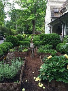 9 Luminous Clever Tips: Beautiful Backyard Garden Landscapes backyard garden layout design.Backyard Garden Shed Ideas. Potager Garden, Garden Landscaping, Landscaping Ideas, Herb Garden, Willow Garden, Herb Farm, Side Garden, Garden Oasis, Garden Edging