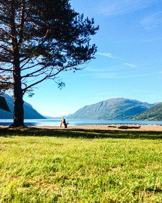 "Malin Kjølseth ☼ on Instagram: ""Savner dette 💛🏔 @andreakjoelz . . . . #tb #ocean #oceanview #wakeupview #camping #norway #visitnorway #mittnorge #fjelltid #eventurjenter…"" Wake Up, Norway, Ocean, Camping, Mountains, Nature, Travel, Instagram, Campsite"