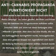 Wir wollen heute an einem Beispiel zeigen, wieso Anti-Cannabis Propaganda nicht funktioniert.  Cannabis Hanf Hemp Weed Marijuana Marihuana Medizin