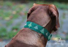 Beautiful Christmas collar