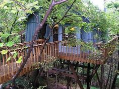 """Treehouse Cottages"" in Eureka Springs, Arkansas... where my hubby and I got married. We had our wedding in their courtyard, and spent our honeymoon, there."