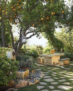 ideas small patio garden design for 2019 Small Courtyard Gardens, Front Courtyard, Small Courtyards, Outdoor Gardens, Courtyard Design, Courtyard Ideas, Small Gardens, Fruit Tree Garden, Garden Trees