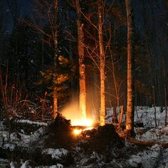 thisrusticlife:  Fire in the night (by view2share) The Magic Faraway Tree, Light Of Life, Pine Forest, Winter Beauty, Winter Trees, Winter Solstice, Waterfall, Backyard, Earth