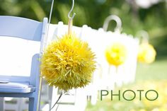 yellow flower balls hung on white ceremony chairs. simple, bold and stunning! (www.springlakecc.com)