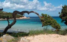 Isole Egadi: un futuro ecosostenibile?