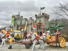 Wolf Knights Castle