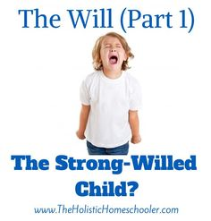 This post examines whether a stubborn, defiant child is really a strong-willed child. So how do parents help children to develop a stronger will? Parenting Workshop, Parenting Plan, Parenting Articles, Kids And Parenting, Parenting Hacks, Parenting Strong Willed Child, Gentle Parenting, Difficult Children, Raising Teenagers