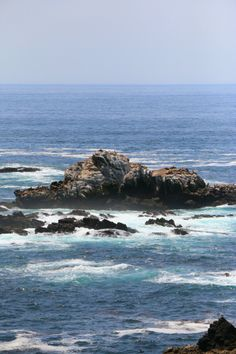 "Los Lobos is called ""little Big Sur"" by the locals and it's true! They are vary similar but Los Lobos was a lot more accessible for a quick day out exploring. #carmel #travel #client"