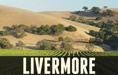 Livermore, CA - Livermore has roots back to the 1800's. William Mendenhall is credited as the city's founder. He helped spur the opening of the railroad through town in 1869 which transformed the area into an agricultural center. The prosperous city had an extensive mercantile and wine industry in the late 19th century. In fact, Livermore is one of the oldest wine growing regions in California. #livermore #680homes