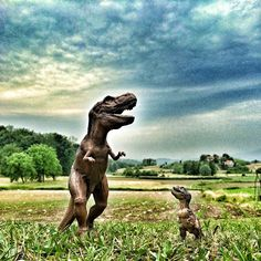 Everybody wants to rule the T-World...  An IG postcard fm T-Rex & Junior!  T-✌️