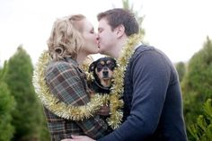 Adorable Christmas engagement picture with your dog in the middle, aw!