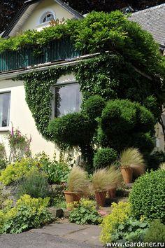 Сад и питомник Арендс (Staudengaertnerei Arends Maubach)   Ландшафтный дизайн садов и парков