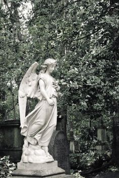Gothic Angel at the old Highgate Cemetery in London, Great Britain. Gothic Angel, Gothic Art, Dracula, Highgate Cemetery London, Old Cemeteries, Great Britain, Album Covers, Scenery, Old Things