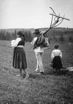 Szénacsinálok - Mihály Pál és családja (Lövéte 1932)