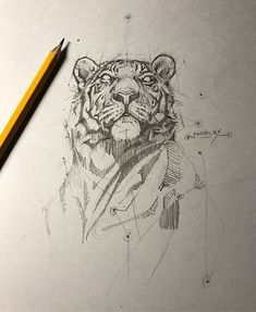 Tiger sketch tattoos in 2019 draw, animal sketches, art drawings. Animal Sketches, Animal Drawings, Drawing Sketches, Art Drawings, Drawing Tips, Pencil Drawings, Drawing Ideas, Sketching, Tiger Sketch