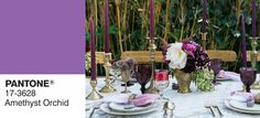 The Top 10 Colors For Fall According To Pantone Colour Schemes, Color Combos, Autumn Interior, Orchid Color, Children And Family, Elle Decor, Fall 2015, Bold Colors, Pantone