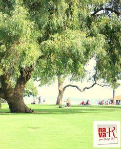 Kings Park - Perth (Western Australia)