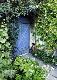 Do you think this is the door to the Secret Garden? If only I could find the key....