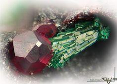 Vörös kuprit malachiton. Képszélesség 1,1mm. Koller Gábor gyűjteménye, Tóth László fotója