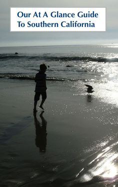Best San Diego Beaches For Families Vacation Travel San Diego - The 6 best beaches around los angeles