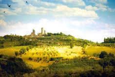 Vernaccia di San Gimignano: il primo vino Doc italiano ha 50 anni