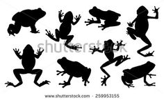 frog silhouettes on the white background - stock vector