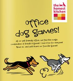 5 office dog games you can play with your pet