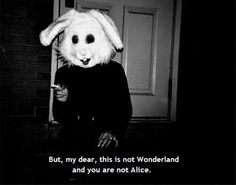 But, my dear, this is not Wonderland and you are not Alice.