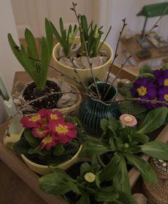 Frühling beim nach Hause kommen