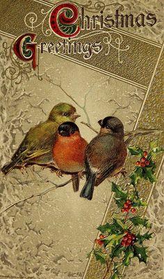 Christmas Greetings...