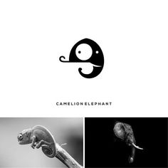 Here we are with new post having clever logos by combining two different things into one. These logos have been created by Rendy Cemix. Creative Logo, Clever Logo, Unique Logo, Cool Logo, Logo Design Inspiration, Icon Design, Logo Intelligent, Logo Animal, Logo Branding