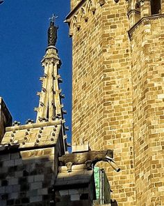 Gargoles Old churches can be the has some curious animals as . Visit Barcelona, Old Churches, Barcelona Cathedral, Tours, City, Building, Travel, Animals, Viajes